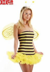 Honey Bee Costume With Petticoat Skirt & Wings LA 8412