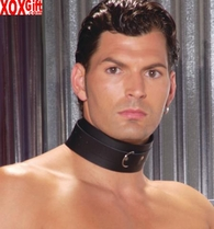 Leather collar With D ring EM L9148