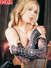 Sheer Spiderweb Arm Warmers Wristlet Gloves Goth Fashion  LA 2091