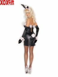 Womens Hippity-Hop Costume 7351
