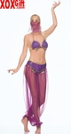 Belly Dancer Harem Costume Set With Gold Trim LA 8931