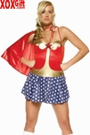 Plus Size Womens Hero Girl Costume LA 83063X