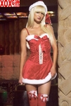 Santa Holiday Dress Costume LA 83138