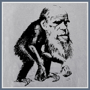 Charles Darwin T Shirt Evolution Tees Science Ape Tshirts