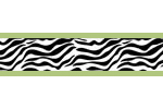 Lime Funky Zebra Baby, Kids and Teens Wall Paper Border by Sweet Jojo Designs