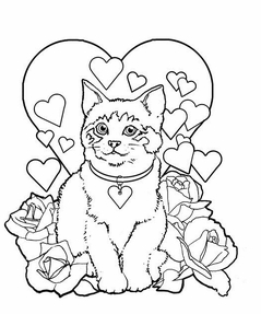 Valentine's Day Cat