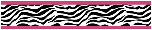 Funky Zebra Baby, Kids and Teens Wall Paper Border by Sweet Jojo Designs - Click to enlarge