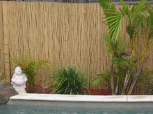 "TWO Bamboo Fence Natural <p>1""x 8' x 8'"