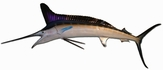 "58"" White Marlin Half Mount Fish Replica"