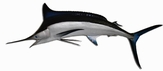"95"" Black Marlin Half Mount Fish Replica"