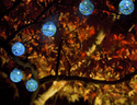 Solar String Lights - Hand-Blown Glass