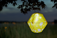 Soji LED Solar Lantern - Yellow Rhombus - 2010 Limited Edition