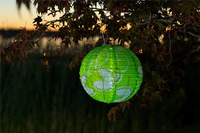 Soji Solar LED Lantern Limited Edition - Green Dandelion