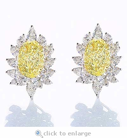 Fieara Cluster Earrings