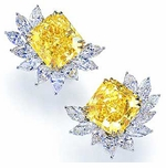 Collina Cluster Earrings