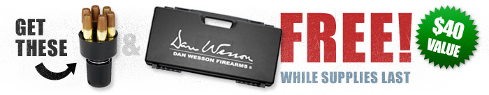 Dan Wesson Air Pistol Special Offer