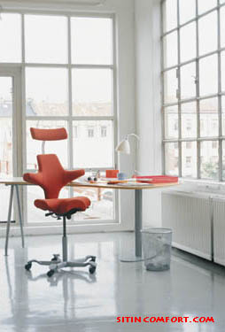 Capisco Saddle Chair - Quick Ship izzy HAG Capisco Office Chairs provide a unique, ergonomic sitting experience and comtemporary design
