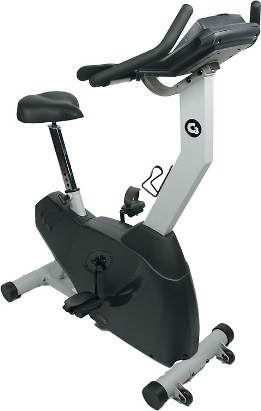 Exercise Bike - LifeSpan Upright Exercise Bike (#C3)