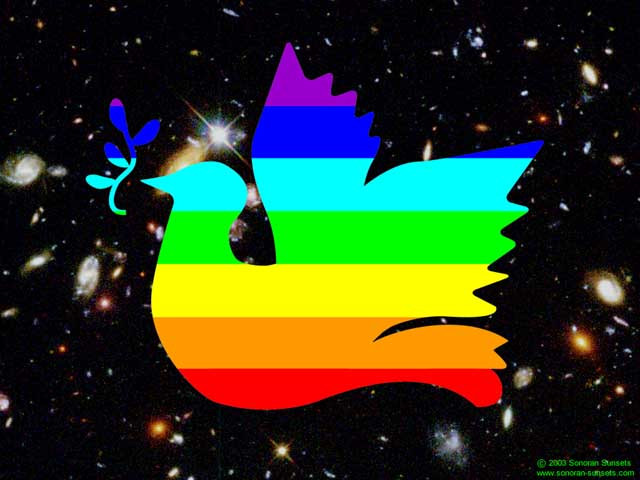 Large Universal Peace Dove Wallpaper 640 x 480