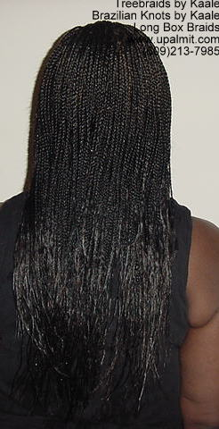Long Box Braids in NJ, Back400.