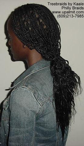 Box braids, Left4 img81.