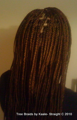Box braids White Back2 20.
