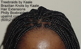Long, large Boxbraids- Philly Boxbraids 412.