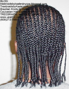 Treebraids by Kaale- Cornrows, Medium- Back102.