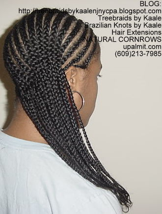 Treebraids by Kaale- Cornrows, Medium- Back100.