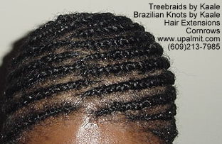 Treebraids by Kaale- Cornrows, T112.