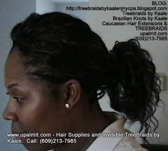 Tree Braids- Cornrows with Wavy human hair, in ponytail Side2368.