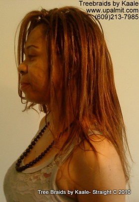 Straight TreeBraids- Left view, New!