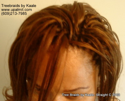 Straight TreeBraids- Top view, New!