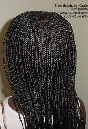 Box braids- Left.