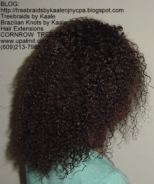 Kinky Curly cornrow Treebraids, Right250.