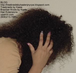 Curly Tree Braids, Right80.