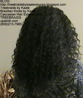 Tree Braids- Individuals with Deep Bulk human hair Back2264.