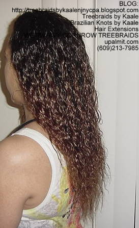 Wet and Wavy cornrow Treebraids Left2149.