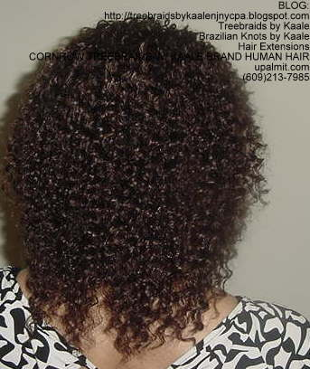 Cornrow Tree Braids KAALE Brand Kinky curly Back173.