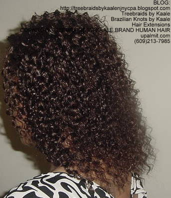Cornrow Tree Braids KAALE Brand Kinky curly Left174.