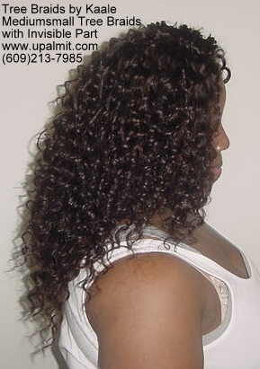 Mediumsmall tree braids with signature Invisible part.