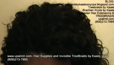 Tree Braids- Cornrows with Deep Bulk human hair, Corporate Top2323.