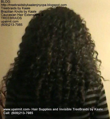 Tree Braids- Cornrows with Wavy human hair Back2304.