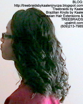 Tree Braids Wavy- Left2279.