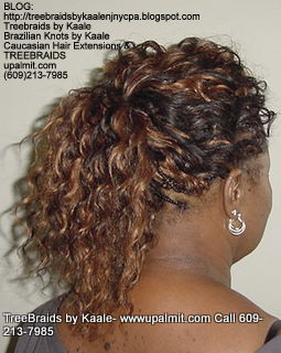 Wavy cornrow Treebraids, Backponytail279.