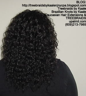 Treebraids with Wavy human hair Back2201.