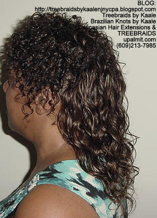 Treebraids with Wavy human hair Left2187.