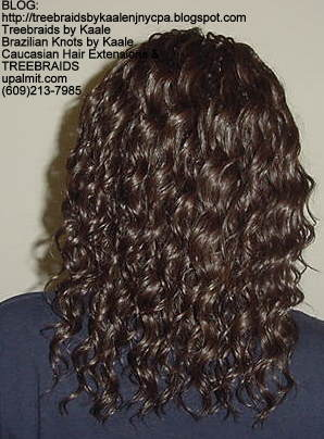 Tree Braids with wavy human hair Back302.