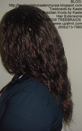 Cornrow Tree Braids Loose Wavy hair Left191.