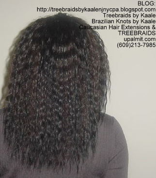 Tree Braids using KAALE Brand Wet n Wavy Tangle Free hair Back290.